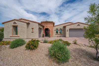 Tucson Single Family Home For Sale: 11825 N Mabini Place