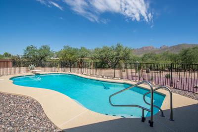 Tucson Single Family Home For Sale: 10205 E Rio De Oro Drive