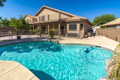 Single Family Home Active Contingent: 1065 S Goldenweed Way