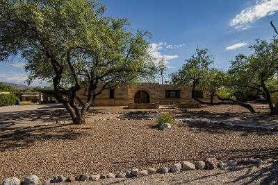 Tucson Single Family Home For Sale: 11422 E Holster Drive