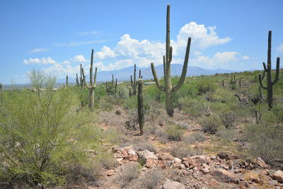 Tucson Residential Lots & Land For Sale: 6200 N Yuma Mine Road