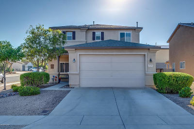 Sahuarita Single Family Home For Sale: 18760 S Via Santa Bonita