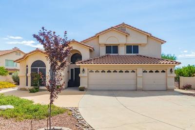 Single Family Home For Sale: 1351 W Rose Quartz Place