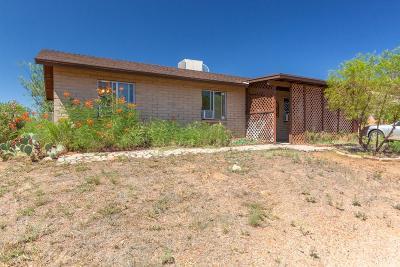 Tucson Single Family Home For Sale: 3609 E Hawser Street