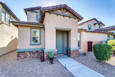 Sahuarita Single Family Home For Sale: 748 W Paseo Celestial