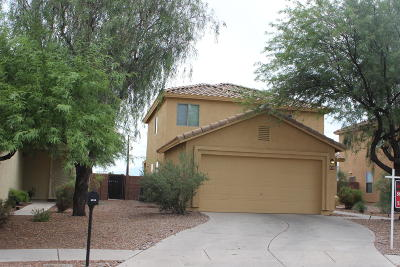 Tucson Single Family Home For Sale: 2818 N Silver Island Way