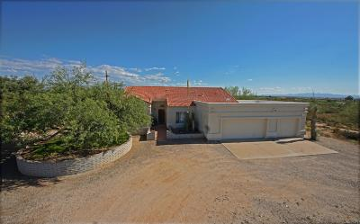 Tucson Single Family Home For Sale: 10902 E Pinal Vista