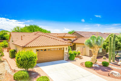 Pima County Single Family Home For Sale: 2588 E Arica Way