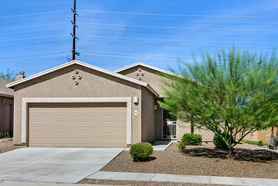 Pima County Single Family Home Active Contingent: 6264 S High Hope Lane