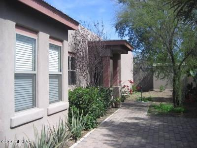 Tucson Single Family Home For Sale: 1029 E Blanton Drive