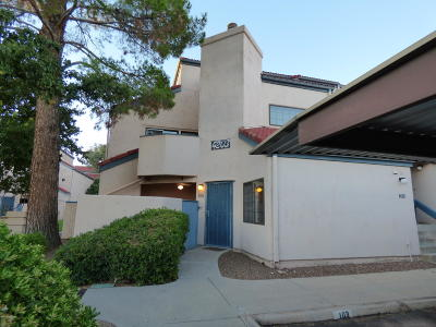 Pima County, Pinal County Condo Active Contingent: 4203 N River Grove Circle