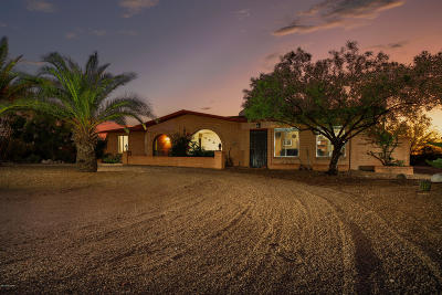 Tucson Single Family Home For Sale: 1840 S Calle Nopalito