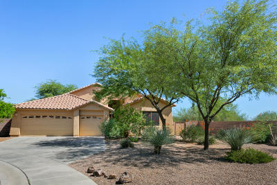 Marana Single Family Home For Sale: 7016 W New Blossom Trail