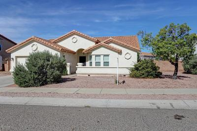 Tucson Single Family Home For Sale: 4525 W Lord Redman