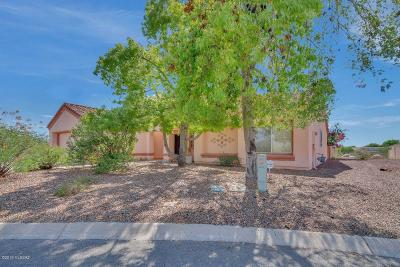 Tucson Single Family Home For Sale: 9805 N High Meadow Trail