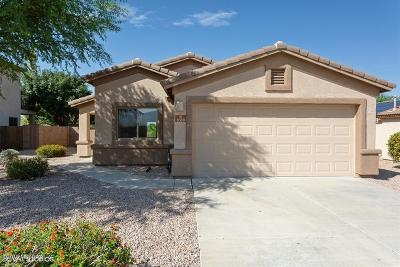 Single Family Home For Sale: 8330 S Camino Serpe