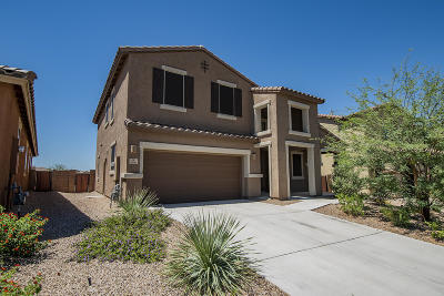 Pima County, Pinal County Single Family Home For Sale: 9480 S Horned Lizard Circle