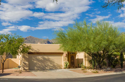 Pima County Single Family Home For Sale: 669 E Squirrel Tail Drive