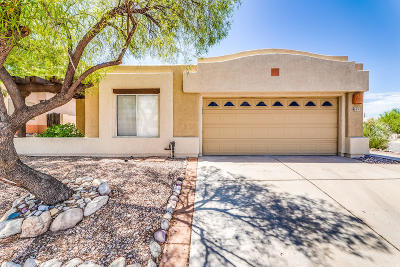 Pima County Single Family Home For Sale: 691 N Hearthside Lane