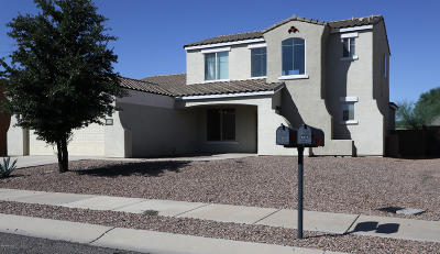Pima County Single Family Home For Sale: 9309 N Indian Summer Drive