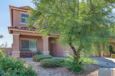 Tucson Single Family Home For Sale: 10520 E Greek Drive