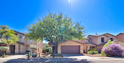 Pima County Single Family Home For Sale: 7059 S Gull Lane