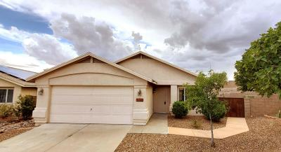 Tucson Single Family Home For Sale: 1142 N Thunder Ridge Drive