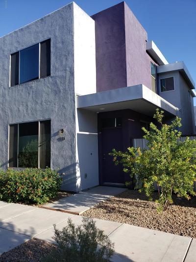 Tucson Single Family Home For Sale: 935 E Millenium Court