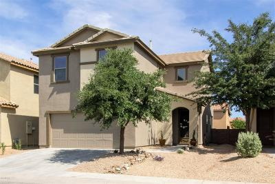 Sahuarita Single Family Home For Sale: 885 E Pecan Shaker Lane