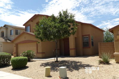Pima County Single Family Home For Sale: 6824 S Avenida De Aventura