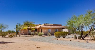 Pima County Single Family Home For Sale: 12455 W Magee Road