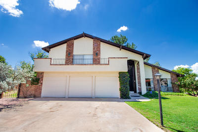 Cochise County Single Family Home For Sale: 2801 Barcelona Drive