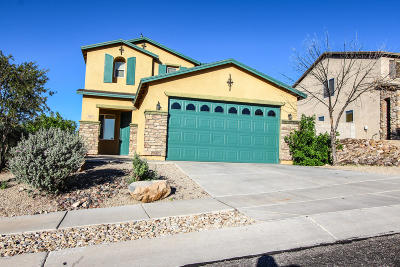 Pima County Single Family Home For Sale: 1332 S Woodbine Lane