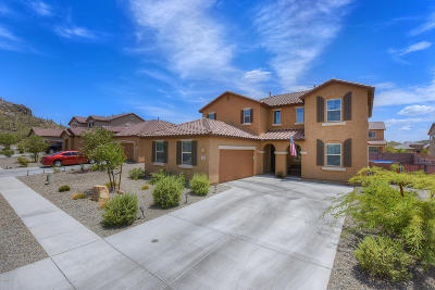 Pima County Single Family Home For Sale: 4285 W Golden Gate Mountain Court