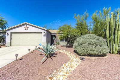 Pima County Single Family Home For Sale: 8697 N Golden Moon Way
