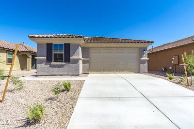 Pima County Single Family Home For Sale: 11546 N Boll Bloom Lot 82 Drive NW