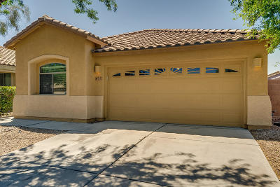 Pima County Single Family Home For Sale: 7192 E Alderberry Street