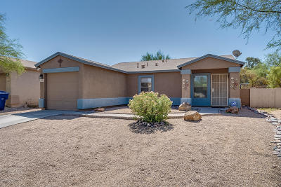 Pima County Single Family Home For Sale: 2558 E Cambridge Ring Drive