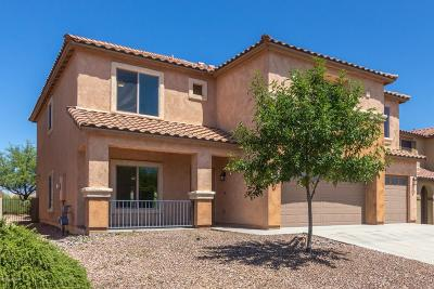 Sahuarita Single Family Home For Sale: 14282 S Via Del Moro