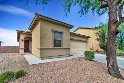 Pima County Single Family Home For Sale: 12941 N Fox Hollow Drive