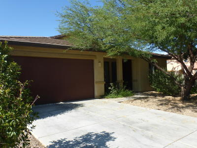 Pima County, Pinal County Single Family Home For Sale: 335 E Desert Haven Place
