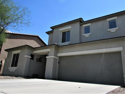Sahuarita Single Family Home For Sale: 150 E Calle Del Rondador