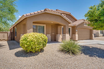 Pima County, Pinal County Single Family Home For Sale: 10703 S Bear Table Tank Drive