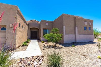 Vail Single Family Home For Sale: 13453 S Sonoita Ranch Circle