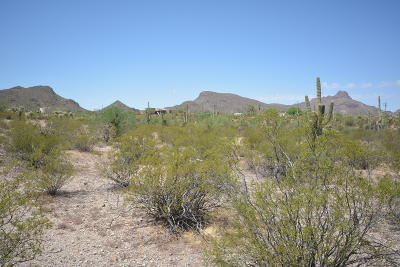 Tucson Residential Lots & Land For Sale: Wade Road