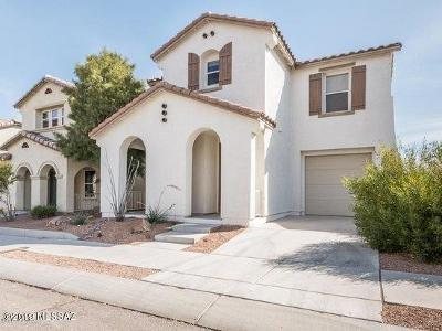 Pima County, Pinal County Single Family Home For Sale: 1133 S Pantano Overlook Drive