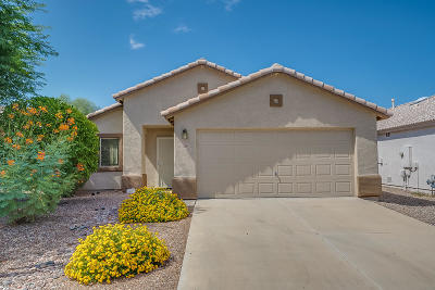 Pima County Single Family Home For Sale: 2859 W Simplicity Drive