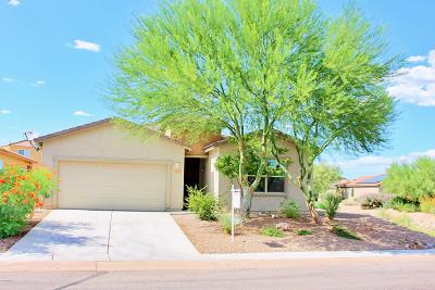 Sahuarita Single Family Home For Sale: 1053 E Empire Canyon Lane