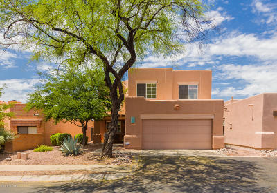 Tucson Single Family Home For Sale: 6569 N Calle Sin Nombre