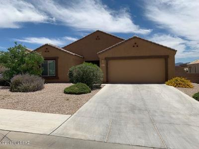 Tucson Single Family Home For Sale: 5197 W Spring Willow Court